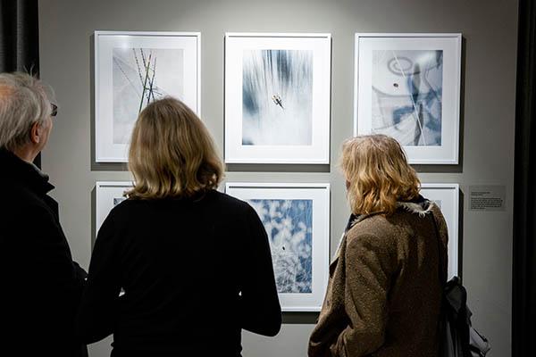 Blick auf das Tableau Bestiarium Umbratum in der Ausstellung Neun mal Zehn in der Galerie Fhochdrei, Berlin